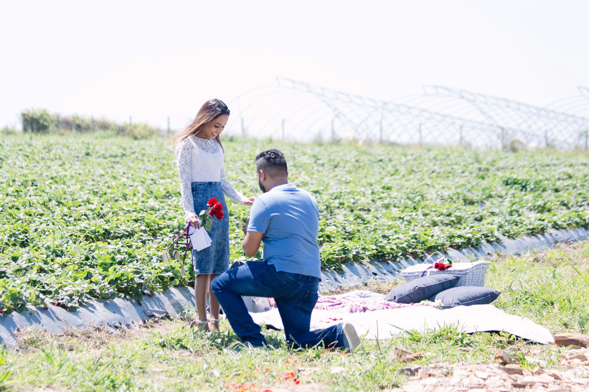 Selwyn and Terina Strawberry Farm engagement