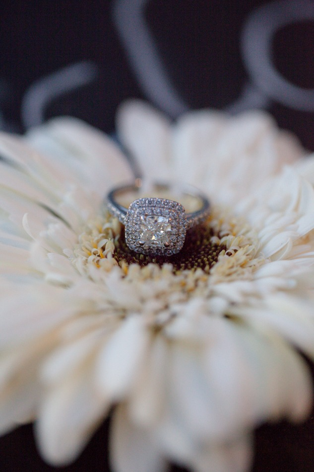 Cameron and Elizma romantic marriage proposal