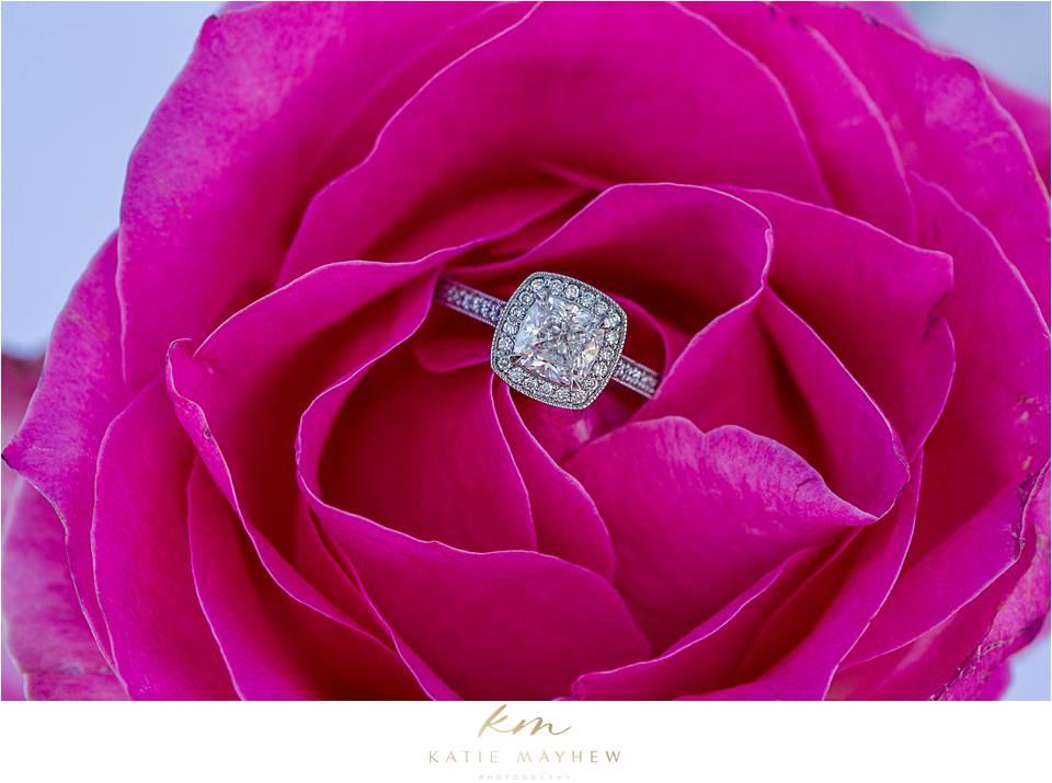 Tavio & Melissa marriage proposal