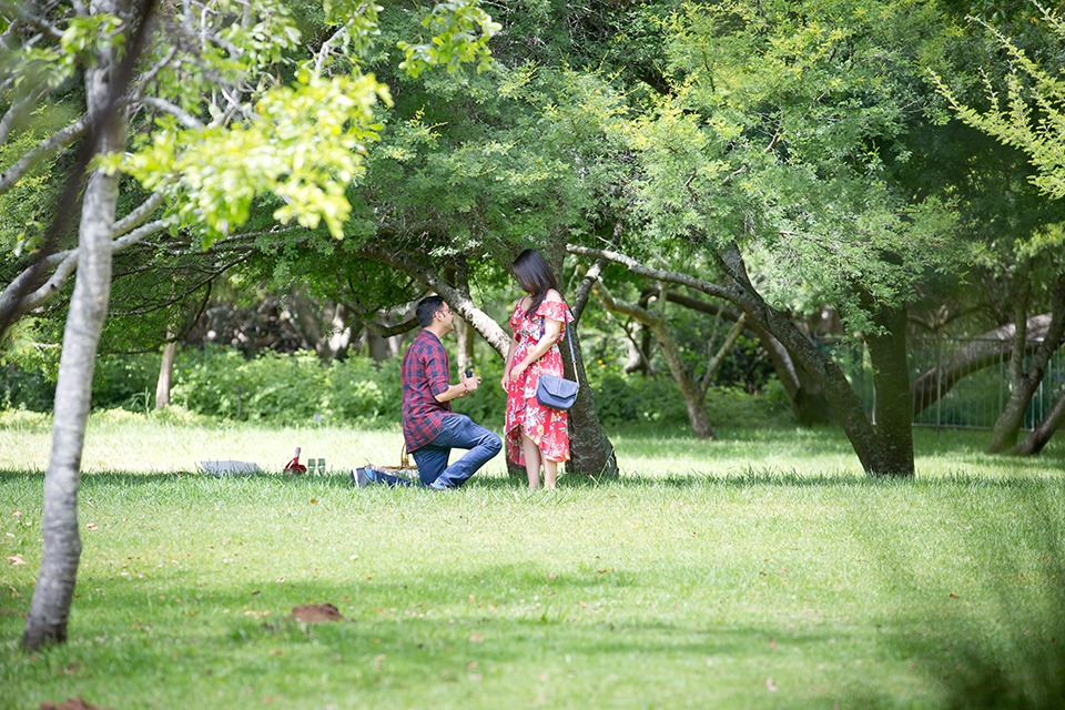 Mitesh and Harsha garden proposal