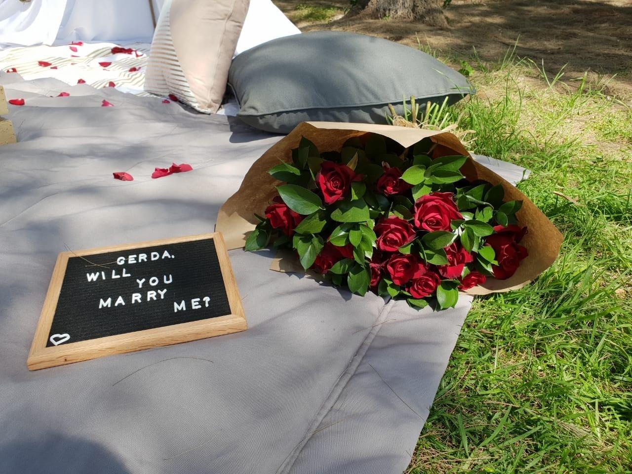 Jose and Gerdas picnic proposal in Johannesburg