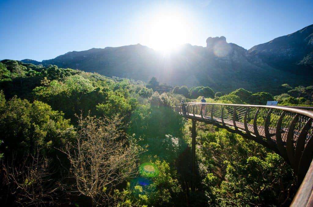 Cape Town landmark proposal ideas