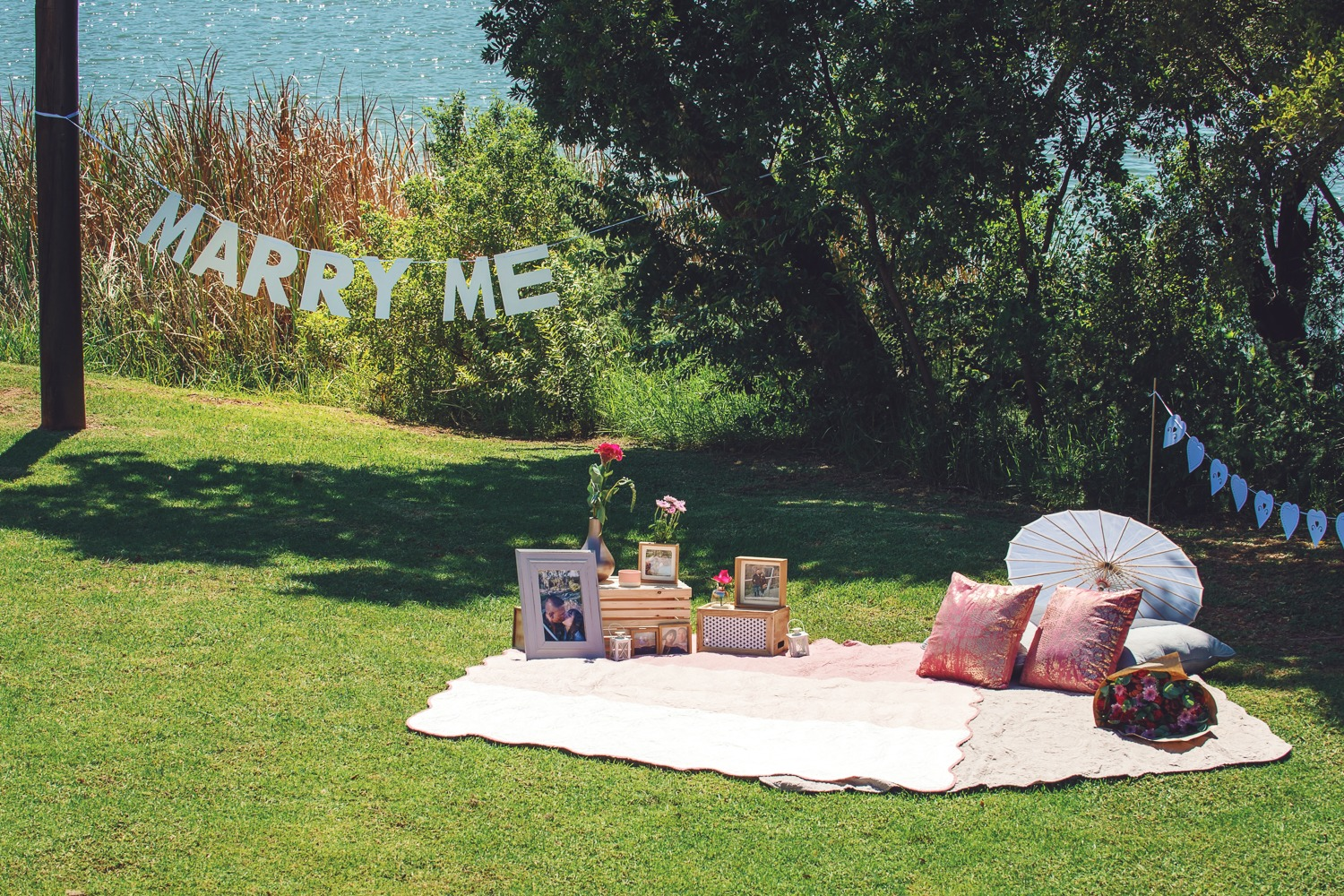 Marriage proposal at a picnic