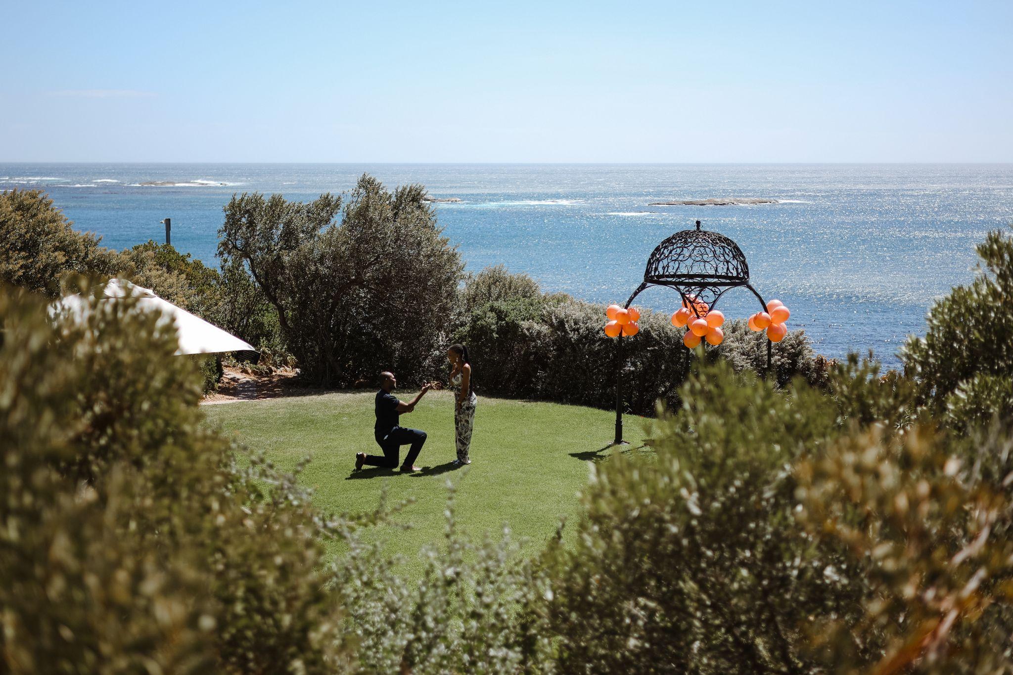 Cape Town garden proposal